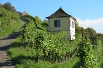 Winterthur_20131019 142436 Goldenberg